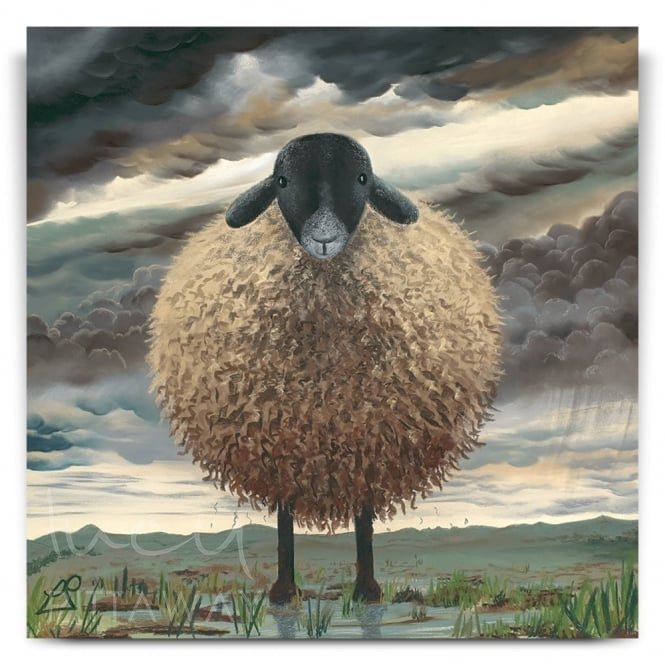 Shaggy Sheep (Print)